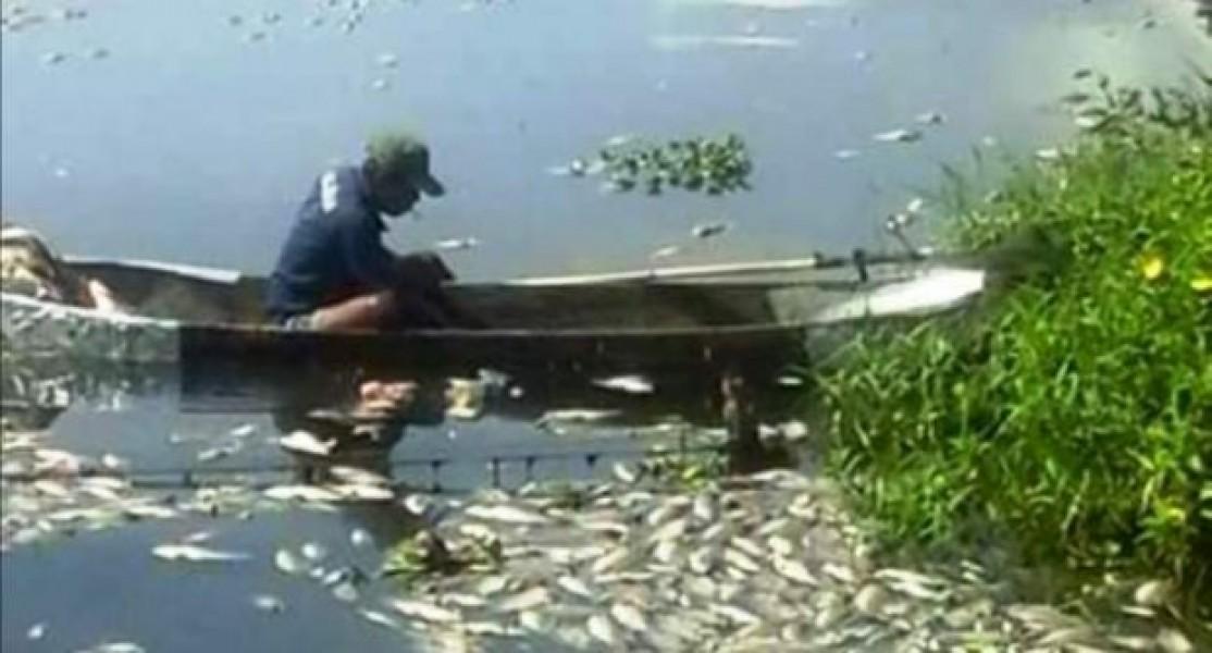 Penataan Kawasan Danau Maninjau, Keramba Akan Dikurangi