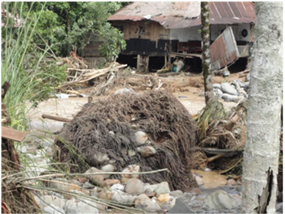 Desa Mandiri Pangan (DMP)